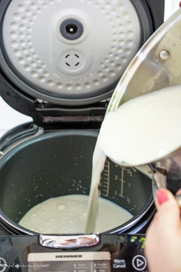 Cum se face iaurtul de casă