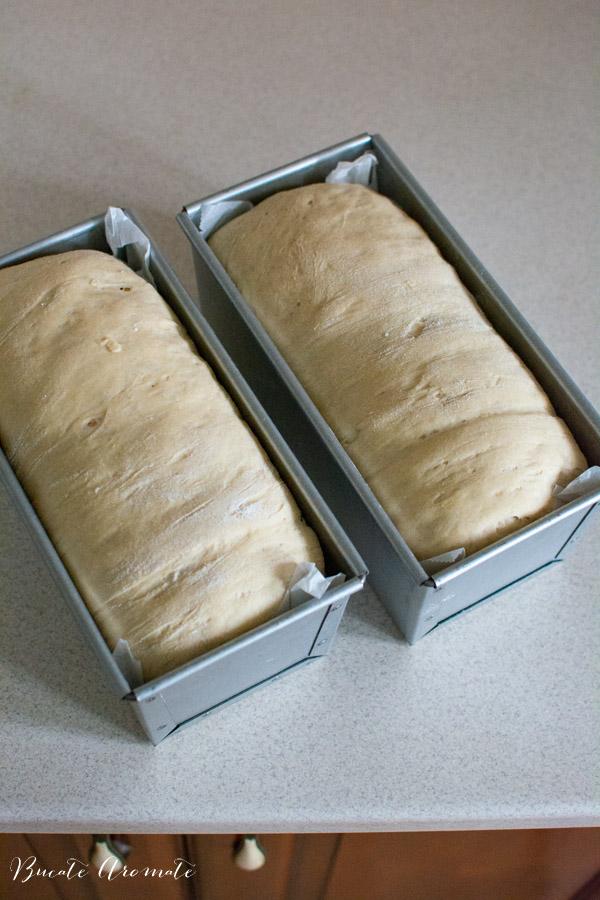 Dospire paine la tava